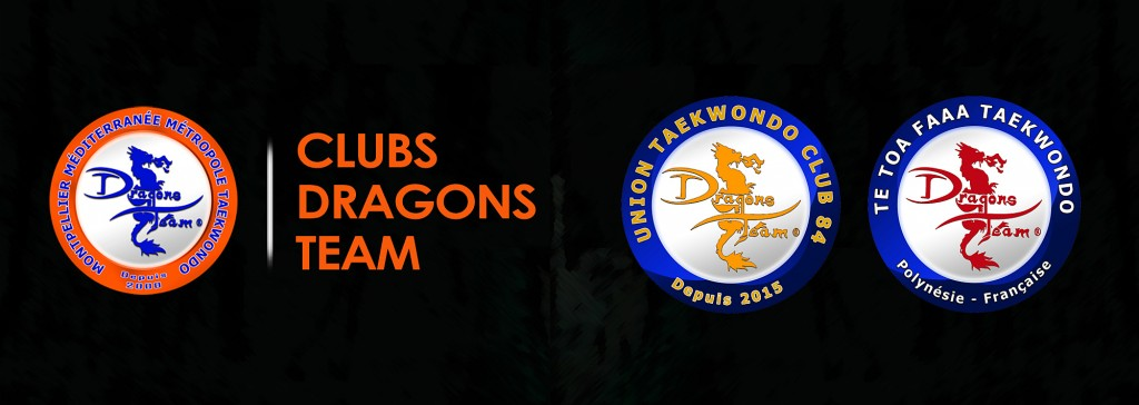 CLUBS DRAGONS TEAM copie